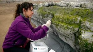 David frente a Goliat: geóloga