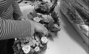 APRAMP: flores