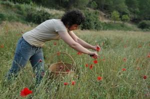 Abraza la tierra: Evelyn