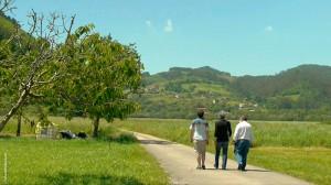 El Secreto de la Colmena: paseo