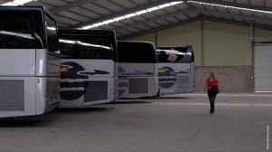 El Secreto de la Colmena: autobuses