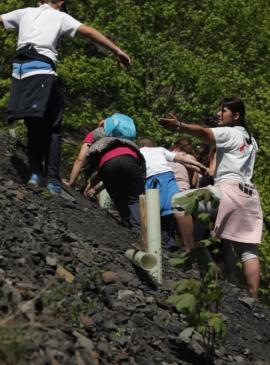 Bosquiterio en antigua mina a cielo abierto en Orallo